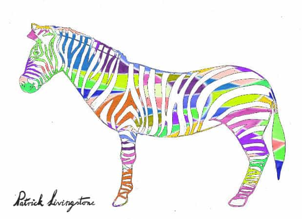 Zebra drawing colored A