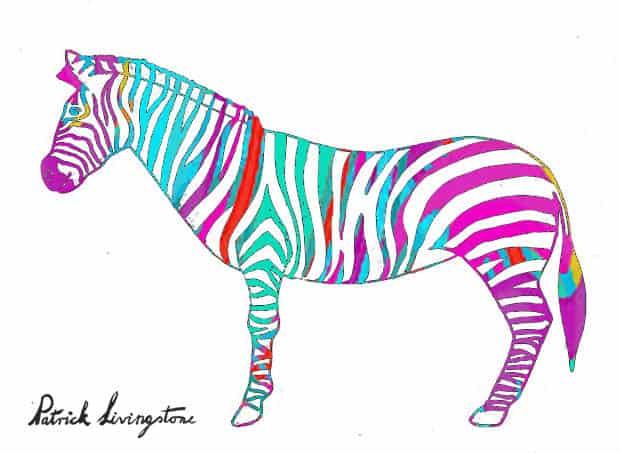 Zebra drawing colored h