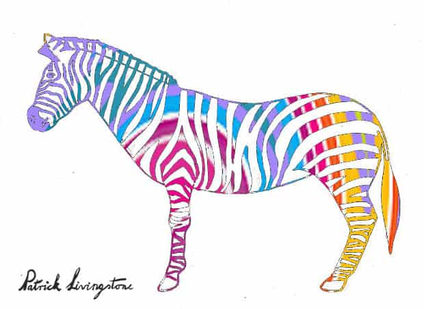 Zebra drawing colored i