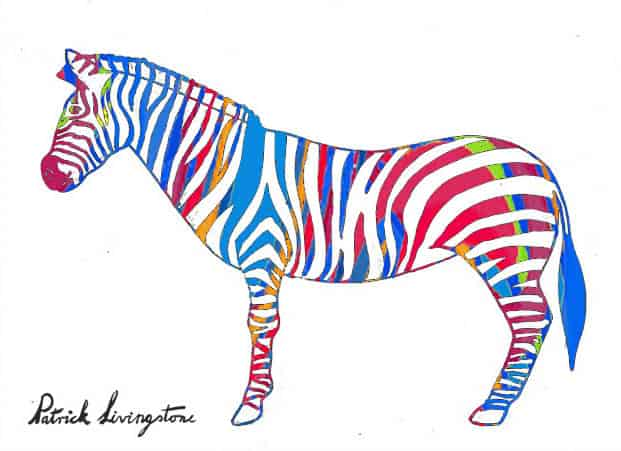 Zebra drawing colored j