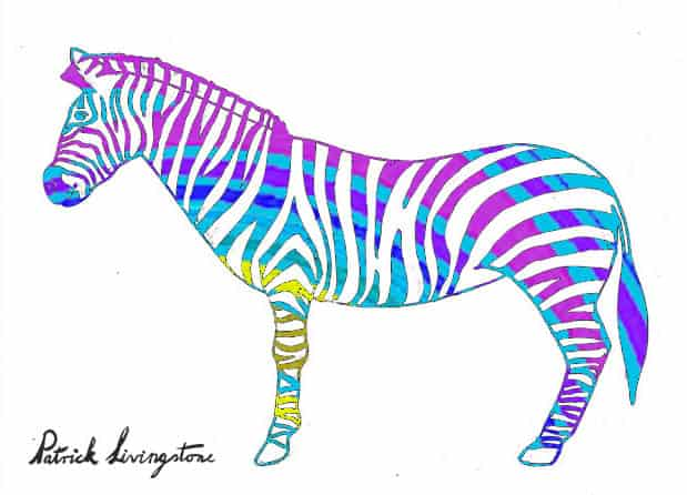 Zebra drawing colored m