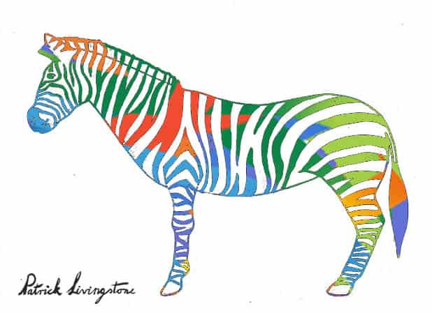 Zebra drawing colored r