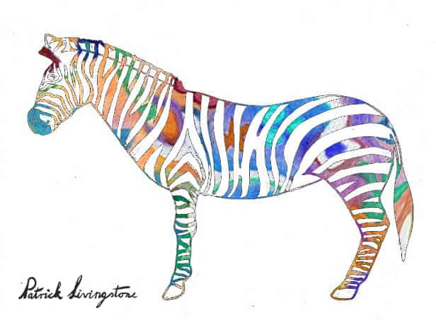 Zebra drawing colored t
