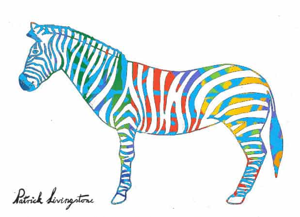 Zebra drawing colored z