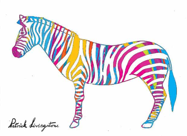 Zebra drawing colored k