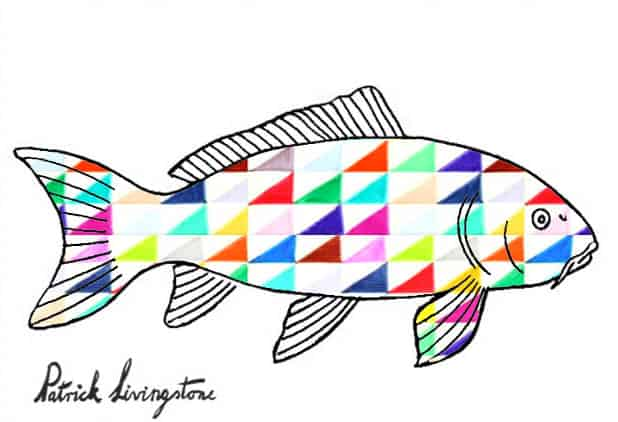 carp drawing colored triangles